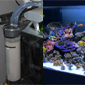 Aquarium Medications, beware of aquarium forums for information
