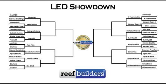 Skewed LED Aquarium Reef Light Showdown