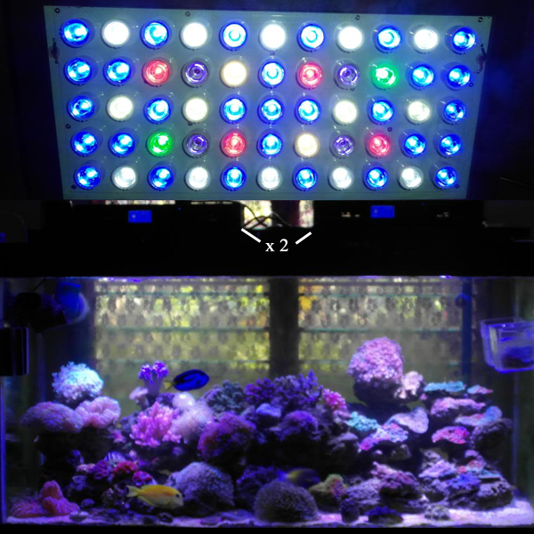 Revised ...  sc 1 st  My Aquarium Opinions & Review of Ocean Revive u0026 Evergrow LED Lights for Reef Aquariums ... azcodes.com